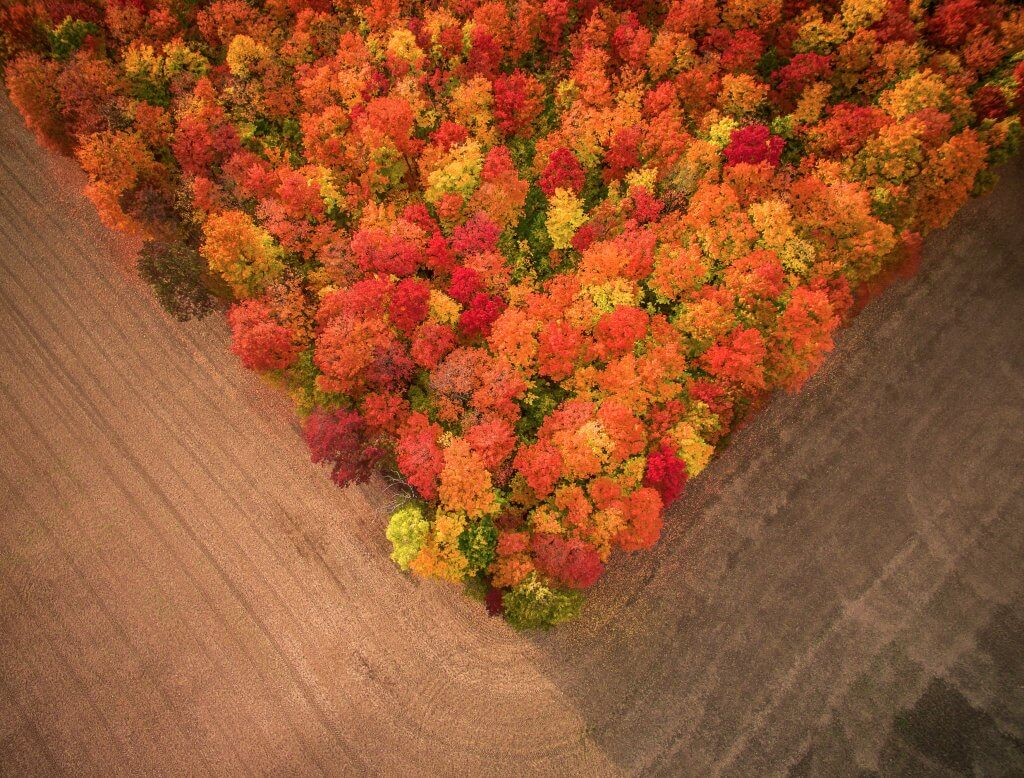 Photo: Fall Fields – Inspire 1 X5