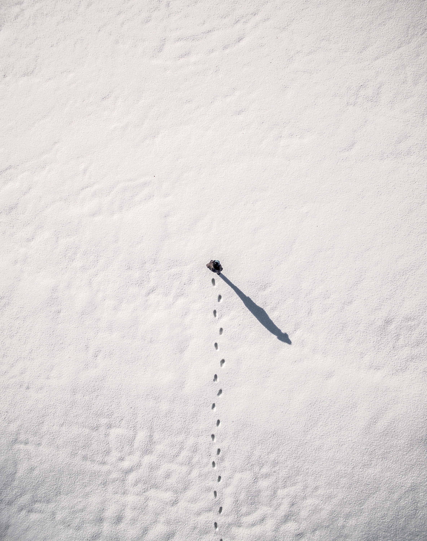 Winter Canvas